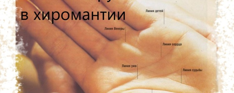 Линии на руке в хиромантии — их расшифровка и значение