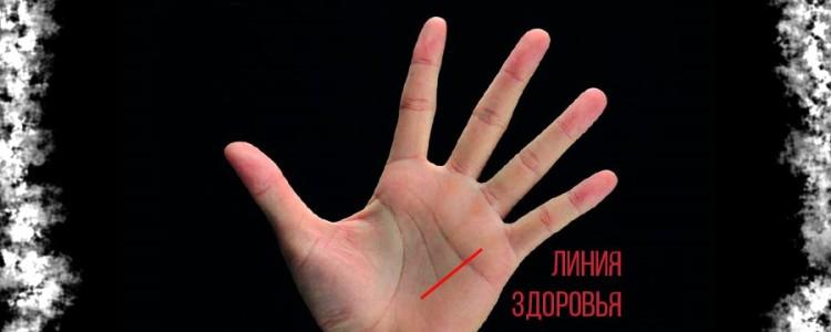 Линия здоровья на руке — её фото и значение с расшифровкой
