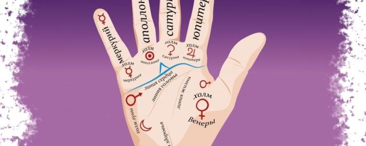 Линия карьеры на руке — толкование знаков с расшифровкой