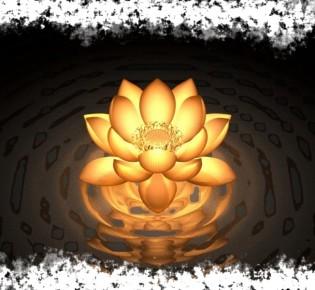 Свадхистана чакра — за что отвечает и где она находится