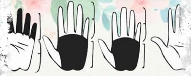 Типы рук и формы ладоней — значение в хиромантии