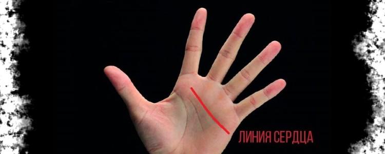 Линия сердца на руке — значение в хиромантии с расшифровкой