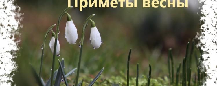 Приметы весны — народные весенние суеверия