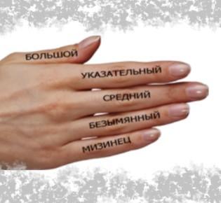Значение пальцев на руке у женщин и мужчин в жизни и судьбе