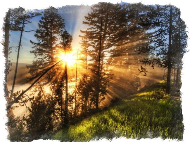 славянский миф ярило бог солнца