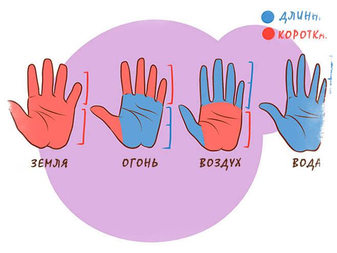 Типы рук и формы ладоней - значение в хиромантии
