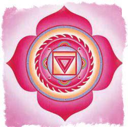 изображение чакр - Муладхара чакра