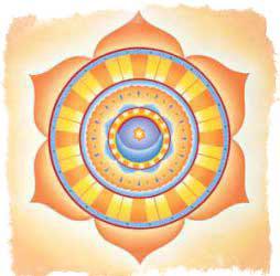 изображение чакр - Свадхистана чакра