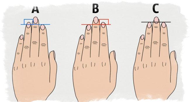 Длина пальцев и характер человека