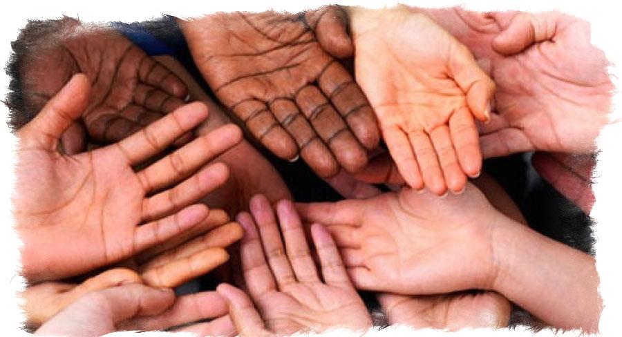 Какие бывают типы рук в хиромантии