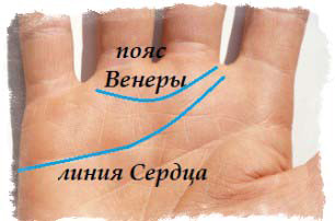 линия сердца на руке - Пояс Венеры
