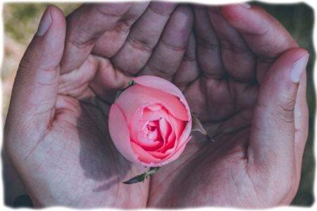 Линия сердца на руке