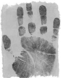 Линия смерти на руке - знак смерти на руке хиромантия