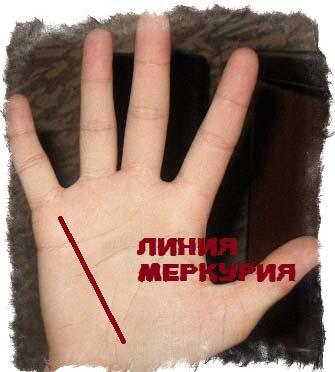 линия здоровья на руке
