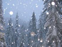 Народные приметы на зиму
