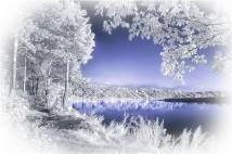 Зимние приметы —декабрь