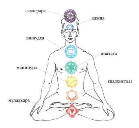 Муладхара чакра — за что отвечает и какие функции выполняет