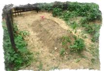 Кладбищенская земля для смертельного обряда