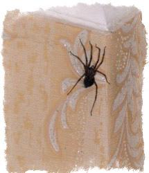 к чему в доме появляются пауки приметы