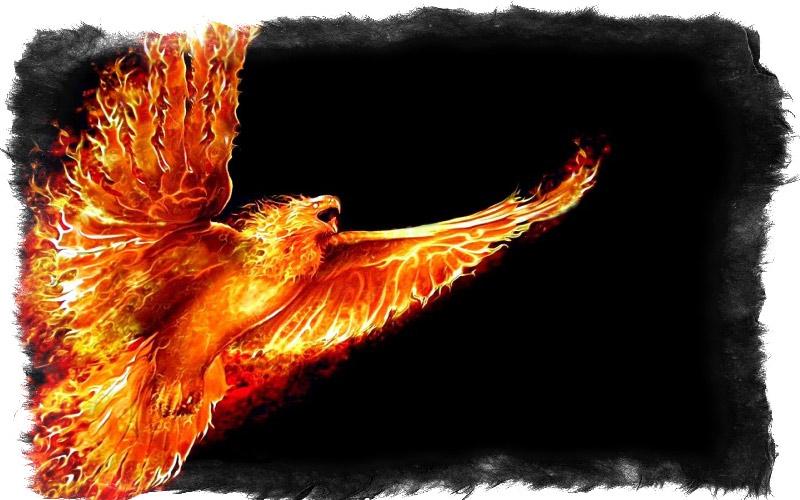 Огненная птица в мифах Древней Греции и Рима - что означает птица феникс