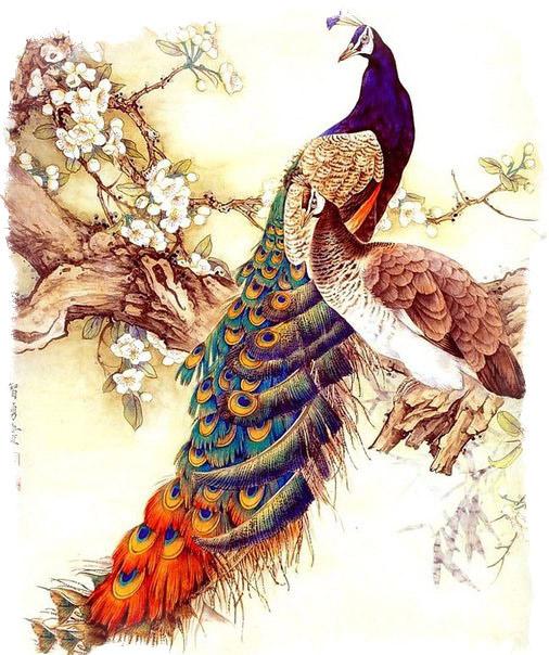 Феникс птица счастья - как выглядит Феникс в Японии и Китае