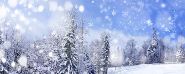 Приметы про зиму под Новый Год