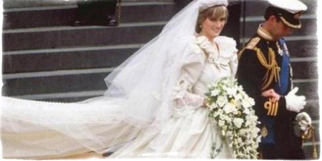Цветок брака стефанотис - можно ли держать дома приметы